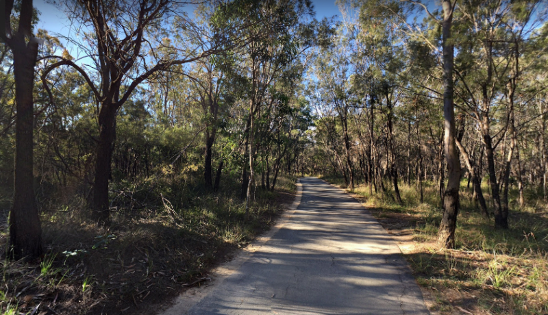 What to Expect from the Second Stage of Toohey Forest Park Upgrades